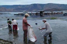 Ribuan ikan mati mendadak di Samosir