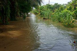 Banjir di Langkat kian meluas