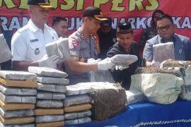 Polisi musnahkan barang bukti 183,6 kilogram ganja