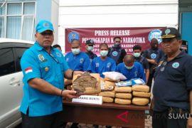 BNNK Madina amankan 42 Kg ganja kering