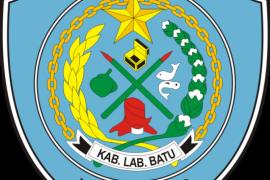 Sejarah berdirinya Pemerintah Kabupaten Labuhanbatu