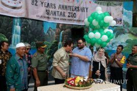 Taman Hewan Pematang Siantar santuni 100 yatim piatu