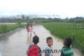 Puluhan hektare sawah terendam banjir di Simangumban