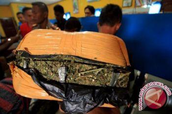 Polres Gagalkan Pengiriman 10 Bal Ganja ke Riau