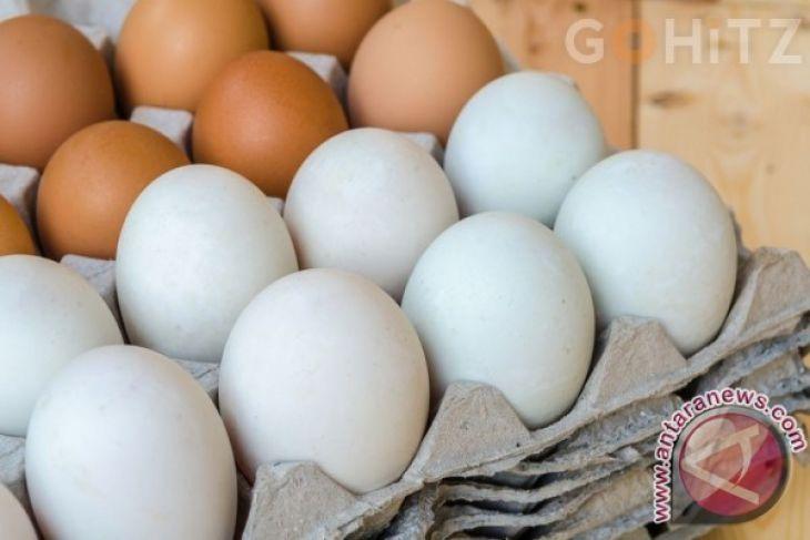 Ini Perbedaan Telur Cangkang Coklat dan Putih