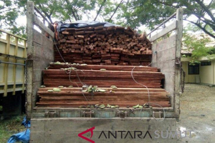 Polres tahan kades pemilik kayu ilegal