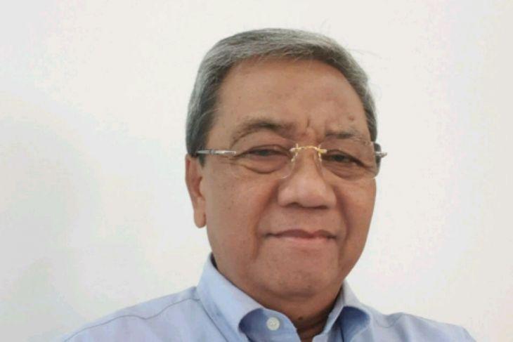 Kadin : PLTA Batangtoru atasi krisis energi Sumut