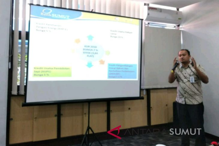 Bank Sumut sudah salurkan KUR Rp490 Miliar