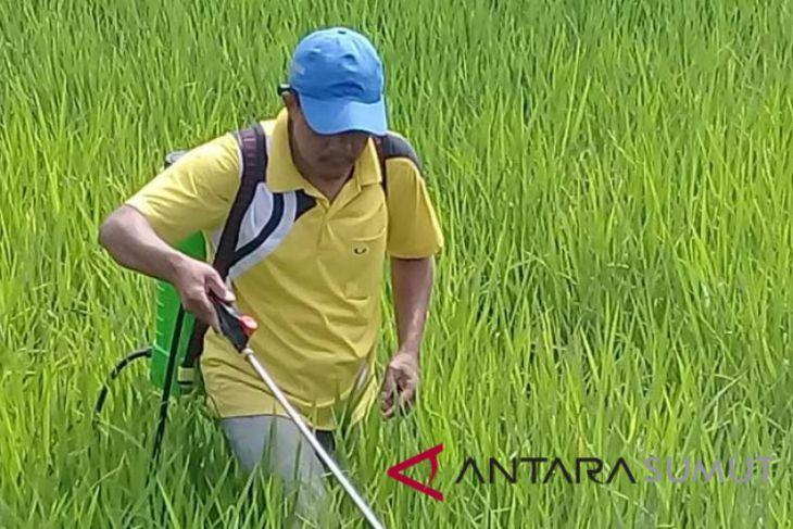 Tapsel Tetap Jaga Stabilitas Produksi Pertanian Antara News