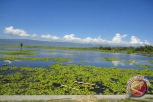 Budidaya Perikanan Di Danau Limboto Perlu Dikontrol