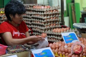 Peternak Lokal Di Gorontalo Penuhi Kebutuhan Telur