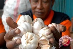 Darmin: harga bawang putih harus dikendalikan