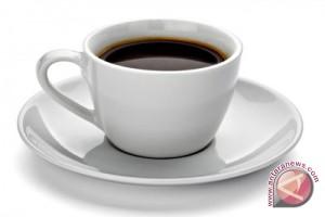 Rekomendasi barista untuk penikmat baru kopi