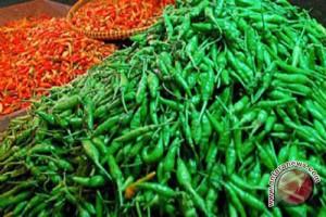 Pascalebaran harga cabai di Minahasa Rp120.000/kg
