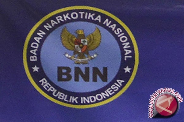 BNN monitor skandal penggerebekan pesta narkoba
