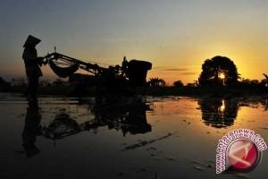 Petani Adukan PG Tolangohulo ke DPD RI