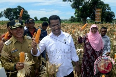 Calon Pengganti Menteri Pertanian Dari PDIP