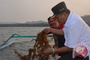 Gorontalo Utara Akan Kembangkan Teknologi Perikanan Tangkap
