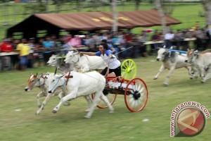 Dishub : Warga Luar Daerah Ramai Kunjungi Gorontalo