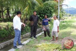 Bone Bolango Fokus Pembangunan Infrastruktur Kawasan Pertanian