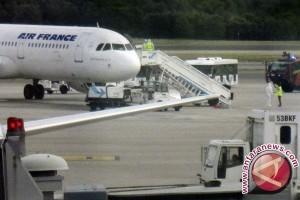 """Penerbangan Air France tertunda gara-gara """"tikus"""""""