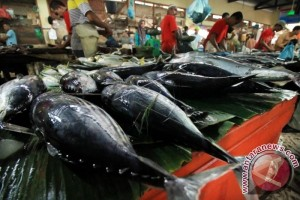 Bupati Hamim Melepas Perdana Ekspor Ikan Ke Taiwan