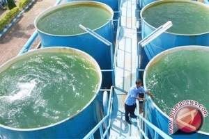 Bupati Bone Bolango Komitmen Penyediaan Air Bersih