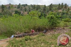 Petani Di Gorontalo Alami Kerugian Akibat Banjir