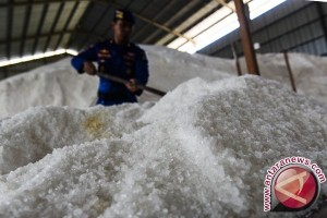 IPB-Universitas Trunojoyo kembangkan teknologi garam berkualitas