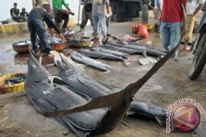 OJK Akan Sosialisasi Asuransi Nelayan di Gorontalo