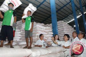 Kementan kekurangan benih jadi kendala pertanian Indonesia