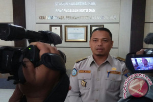 Stasiun Karantina Imbau Peritel Jual Patin Lokal