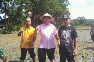 DPRD Minta Pemerintah Cepat Tanggapi Keluhan Petani