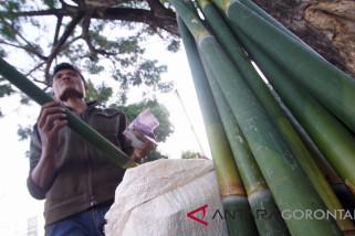 Penjualan Bambu Untuk