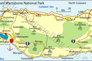 Petualangan Jelajah Hutan Pinogu Bone Bolango Dimulai