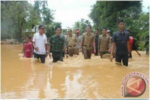 Zola tuding penambang emas liar pemicu banjir