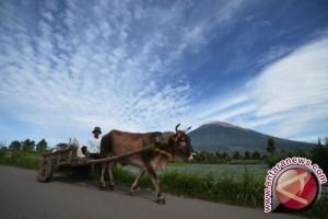 DPRD: Disbudpar harus menjaga intensif destinasi wisata