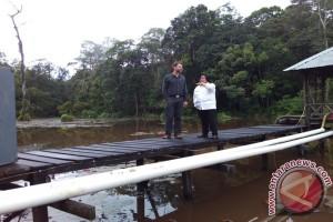 Indonesia targetkan 1,65 juta hektare restorasi ekosistem