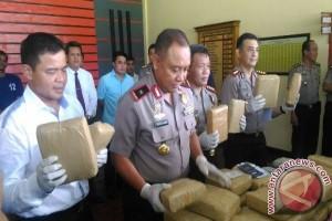 Polisi tangkap sopir bawa 54 kilogram ganja