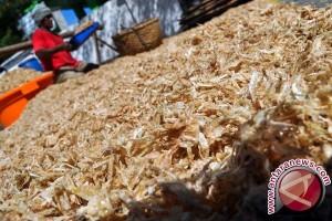 Kulit udang jadi plastik ramah lingkungan? bisa