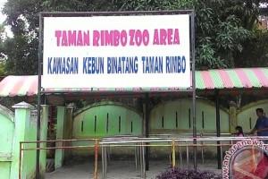 Taman Rimba Jambi raup pendapatan Rp669 juta
