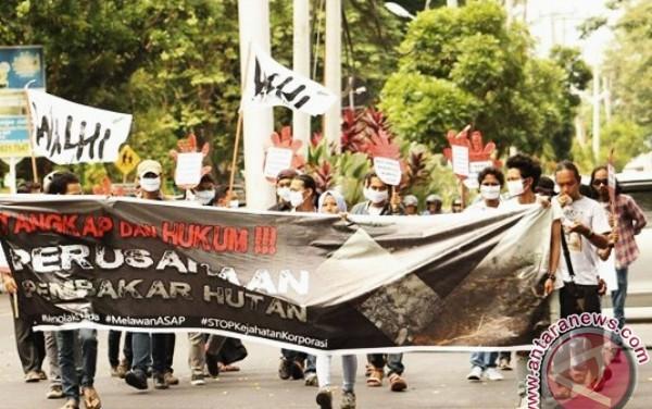 Walhi: Perusahaan pembakar lahan harus ditindak tegas (Video)