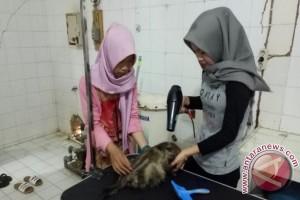 Universitas Jambi buka klinik hewan peliharaan untuk umum