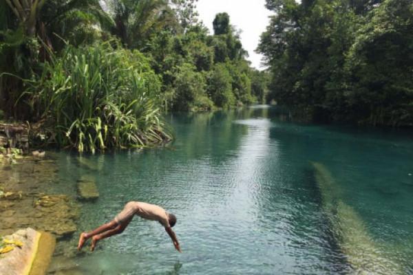 Tanah Papua berhutan adat terluas di Indonesia (video)