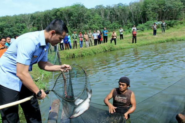 Gubernur minta bekas tambang untuk perikanan