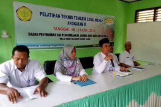 BPP Jambi bekali petani Merangin pengendalian hama cabai video