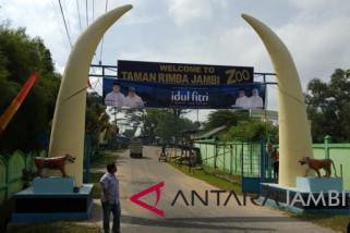 Taman Rimbo Jambi siap sambut pengunjung