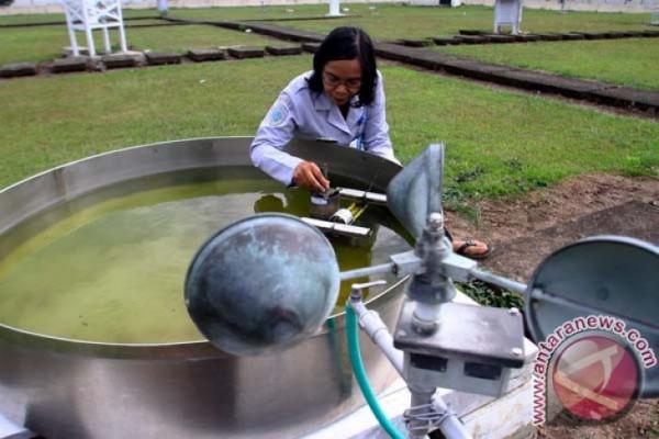 BMKG: musim kemarau di Indonesia dipengaruhi angin Monsun Australia