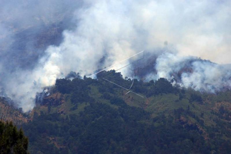 Polisi selidiki kebakaran Gunung Suta  Sukabumi