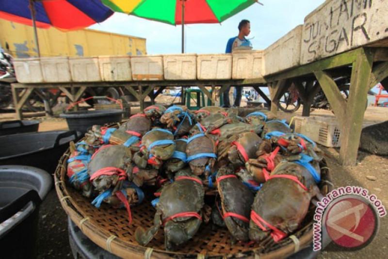Dosen UGM olah cangkang kepiting jadi antihama ramah lingkungan
